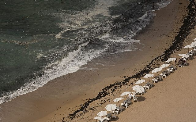 Garbage creeps towards the shore at Stanley Beach in Alexandria, Egypt, August 8, 2019. (Maya Alleruzzo/AP)