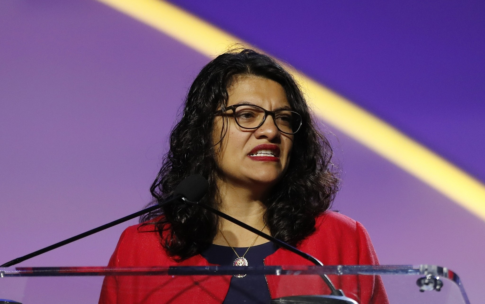 US Congresswoman Rashida Tlaib refuses Israel's offer to visit on 'humanitarian grounds'