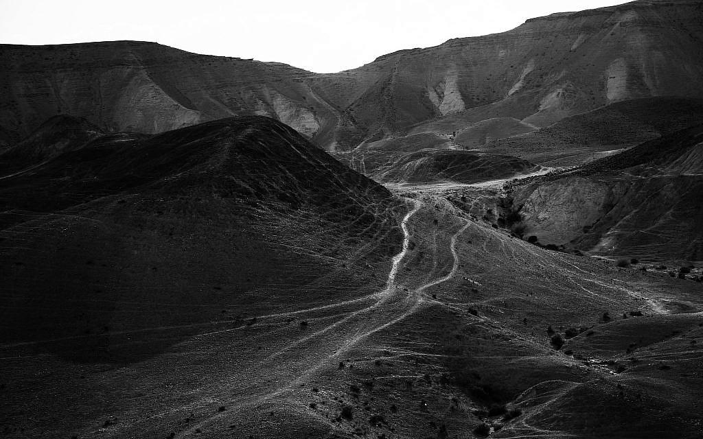 Another work from Tal Paz-Fridman's series in the Judean Desert (Courtesy Tal Paz-Fridman)