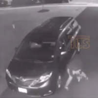 A suspect can be seen slashing a tire on a car in Lakewood Township, New Jersey, on August 10, 2019. (Screen capture: Twitter)