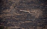 A felled tree lies surrounded by charred tree fragments on a field left scorched by wildfires near Porto Velho, Brazil, Aug. 23, 2019. (AP Photo/Victor R. Caivano)