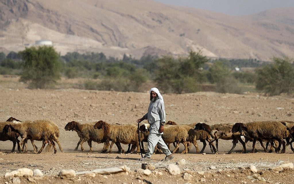 A Bedouin shepherd walks with his herd of sheep in the Jordan Valley in the West Bank on September 11, 2019 (AHMAD GHARABLI / AFP)