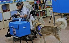 A wheelchair-bound man accompanied by his dog and parrot casts his ballot during elections for the Knesset, at a polling station in Tel Aviv, on September 17, 2019. (Gil Cohen-Magen/AFP)