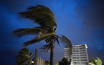 Strong winds move the palms of the palm trees at the first moment of the arrival of Hurricane Dorian in Freeport, Grand Bahama, Bahamas, Sept. 1, 2019. (AP Photo/Ramon Espinosa)