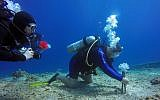 Research divers implant 3D printed corals in the Red Sea as part of a study being carried out by Ben Gurion University's Marine Biology and Biotechnology Program and the Design-Tech Lab at the Technion Israel Institute of Technology. (Jenny Tynyakov)