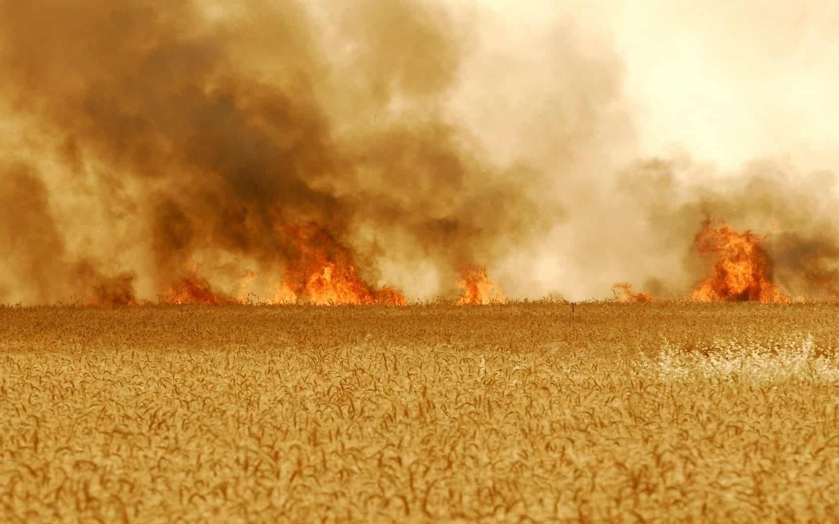 A field in Kibbutz Nir Am ablaze over rocket fire from the Gaza Strip. (Photo: Avi Ohayon/GPO)