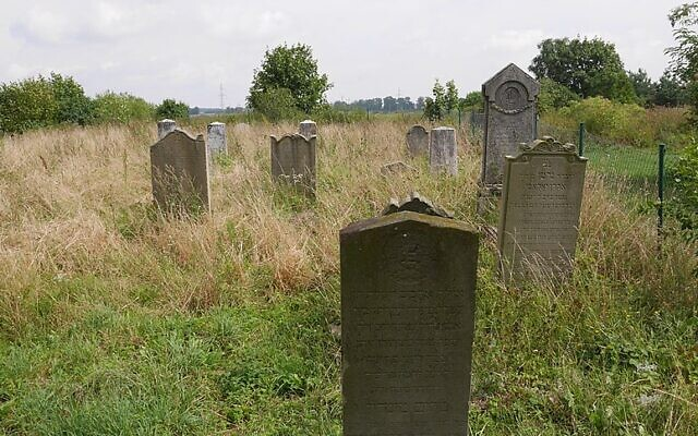 The Jewish cemetery in Zalewo, Poland (CC BY-SA WiktorN.PL/Wikimedia Commons)