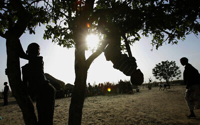 Children play on trees in the Kaudwane settlement outside the Kalahari Game Reserve, November 19, 2005 (AP Photo/Jerome Delay)
