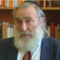 Rabbi Daniel Greer (Screen capture/YouTube via JTA)