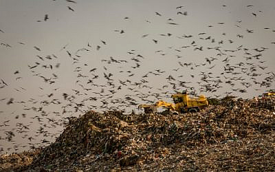 The Dudaim dump site, the biggest landfill in Israel, near the city of Rahat in southern Israel, seen on August 10, 2016. (Yaniv Nadav/Flash90)