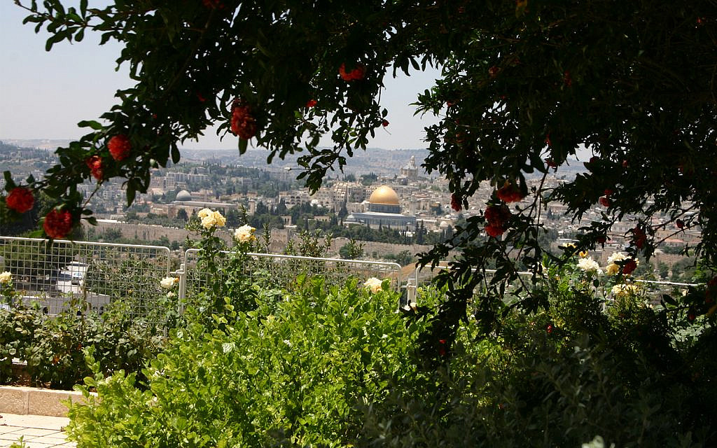 Jerusalem's Old City seen from the Mount of Olives. Montefiore took in this view on his trip but kept his distance from the Old City itself because of an outbreak of disease. (Shmuel Bar-Am)