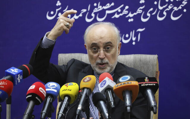 In this photo released on Nov. 4, 2019, Ali Akbar Salehi, head of the organization, speaks at a news conference after visiting Natanz enrichment facility, in central Iran. (Atomic Energy Organization of Iran via AP)