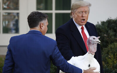 US President Donald Trump pardons Butter, the national Thanksgiving turkey, in the Rose Garden of the White House, November 26, 2019, in Washington. (AP Photo/Patrick Semansky)