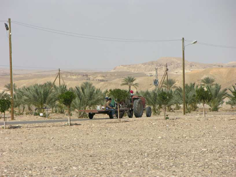 Israeli farmers to quit Jordanian lands as 25-year lease expires