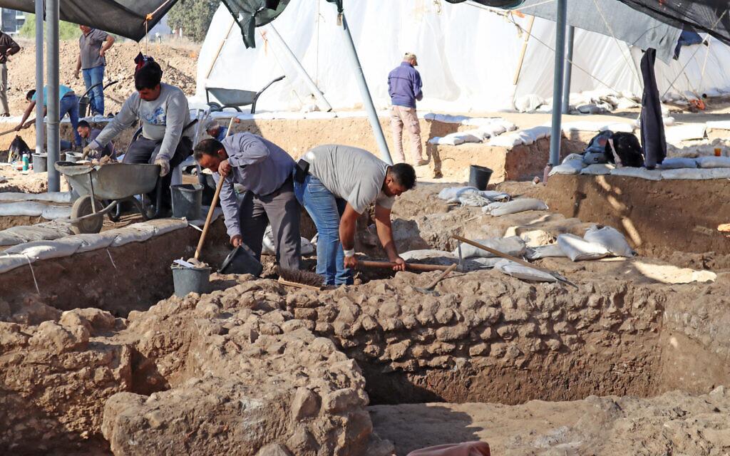 Work in the Ashkelon excavation (Anat Rasiuk, Israel Antiquities Authority)