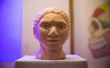 A reconstruction of what an ancient Denisovan female head may have looked like according to researchers from the Hebrew University, presented during a press conference at the Hebrew university on September 19, 2019. (Yonatan Sindel/Flash90)