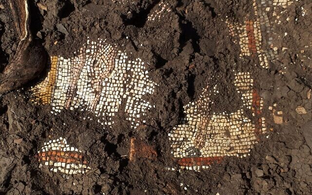 Remains of a 3rd century CE mosaic from a synagogue found in the ancient town of Majdulia, in the Golan. (courtesy)