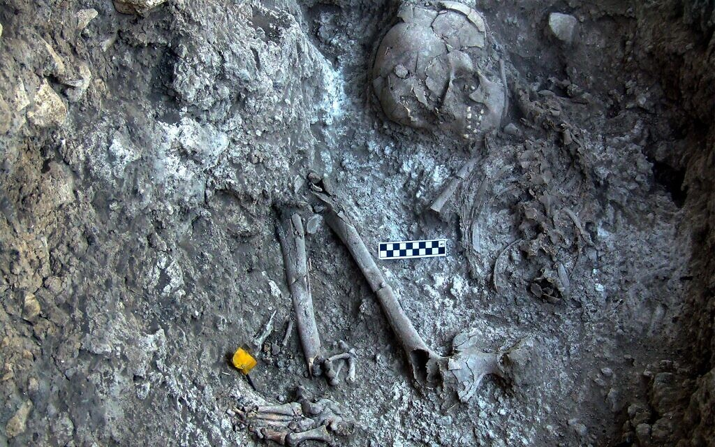 Illustrative: Close-up of a 12,000-year-old human burial embedded in the white material found in the Ein Gev cave. (courtesy)