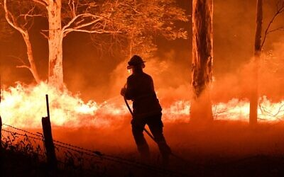 This picture taken on December 31, 2019 shows a firefighter hosing down trees and flying embers in an effort to secure nearby houses from brush fires near the town of Nowra in the Australian state of New South Wales. (Photo by SAEED KHAN / AFP)