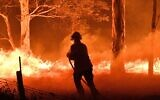A firefighter in Australia hoses down trees to protect nearby homes from bush fires near the town of Nowra in the state of New South Wales on December 31, 2019 as the fires led to the evacuation of popular tourist areas in the state. (Saeed Kahn/AFP)
