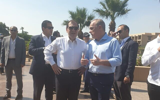 An undated photo of Energy Minister Yuval Steinitz (R) and Egyptian Petroleum Minister Tarek El-Molla speaking during a meeting of the Eastern Mediterranean Gas Forum, in Cairo, Egypt. (Israeli Energy Ministry/courtesy)
