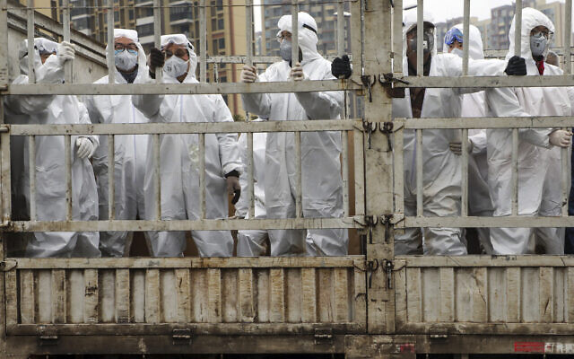 Workers in protective suits ride on a truck carrying medical supplies into Huoshenshan temporary hospital built for patients who diagnosed with 2019-nCoV in Wuhan in central China's Hubei province, February 6, 2020. (Chinatopix via AP)