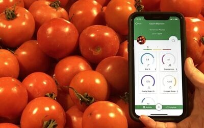 Clarifruit has created an automatic quality control and data analytics software for the fresh produce industry (Courtesy)