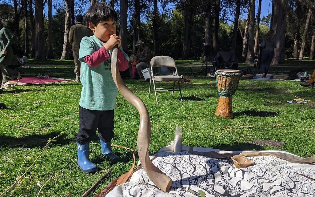 A child plays with a shofar in at a Tu B'Shvat event outside of San Francisco on February 9, 2020. (Melanie Lidman/Times of Israel)