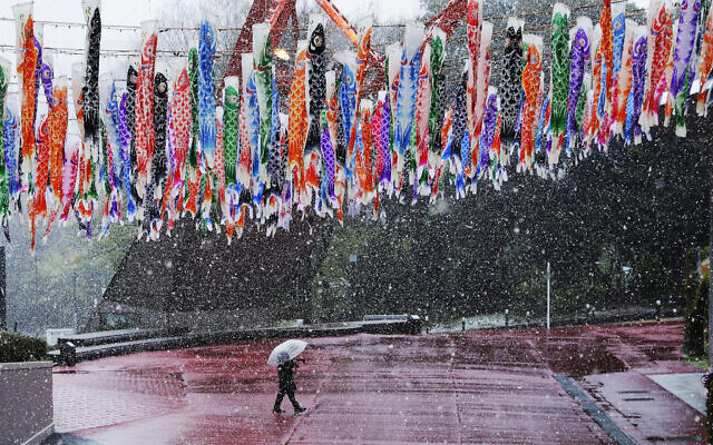 A man walks past hanging Koinobori (carp-shaped windsocks) during a snowfall in Tokyo, Sunday, March 29, 2020. (AP/Gregorio Borgia)