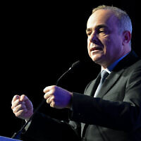Energy Minister Yuval Steinitz speaks at a conference in Tel Aviv on February 27, 2019. (Flash90)