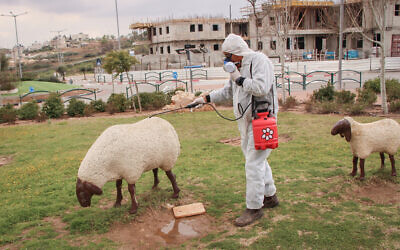 A worker in protective clothing disinfects a public playground in the West Bank settlement of Efrat on March 22, 2020. (Gershon Elinson/Flash90)