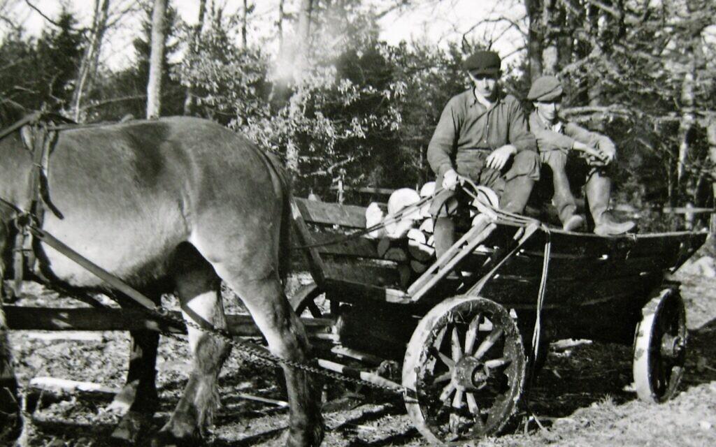 Otto Ullmann working in the woods together with unknown man, Pjätteryd, Småland. (Elisabeth Åsbrink)
