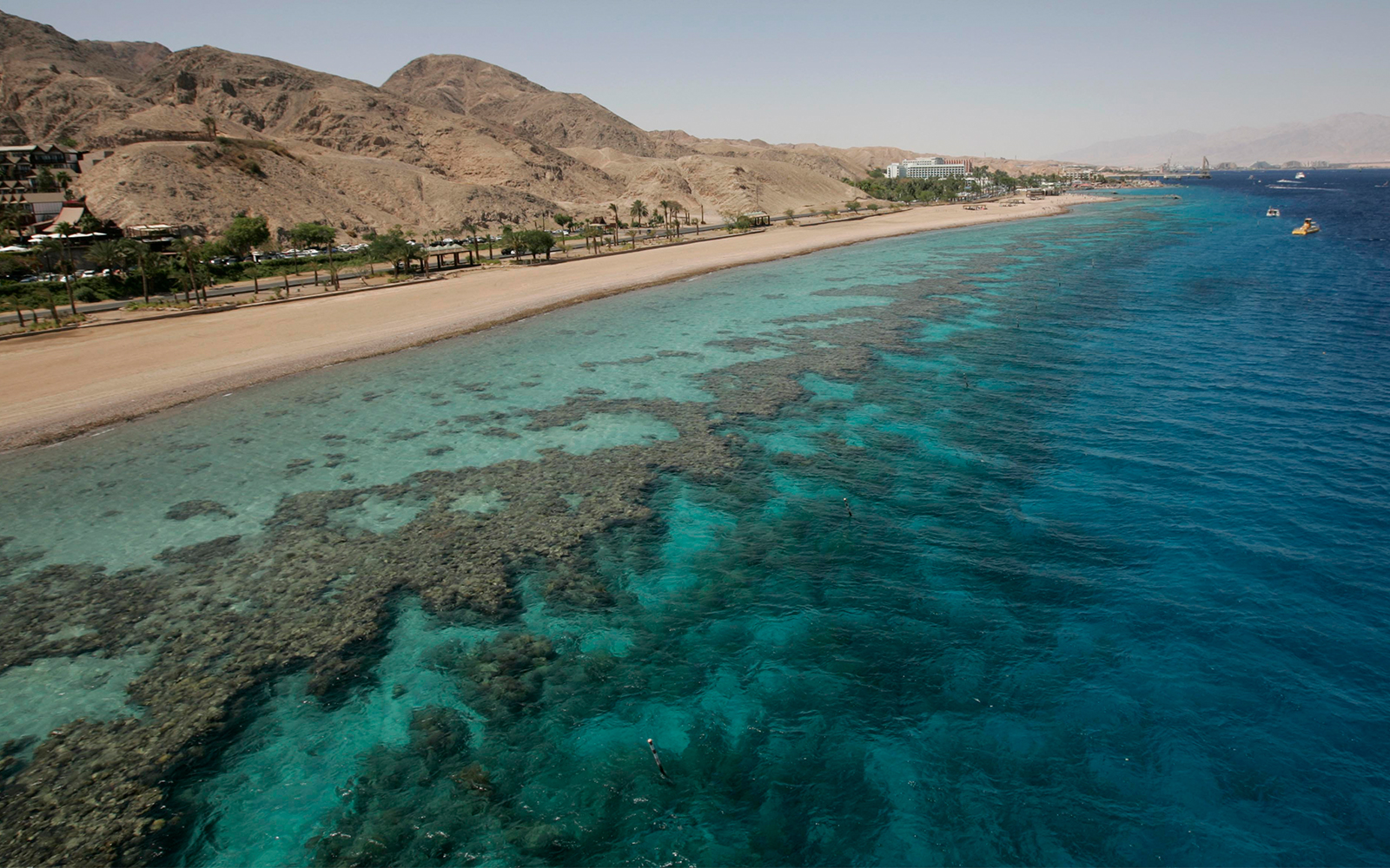 A coral beach in the Red Sea, Eilat, May 29, 2009. (Anna Kaplan/Flash90)