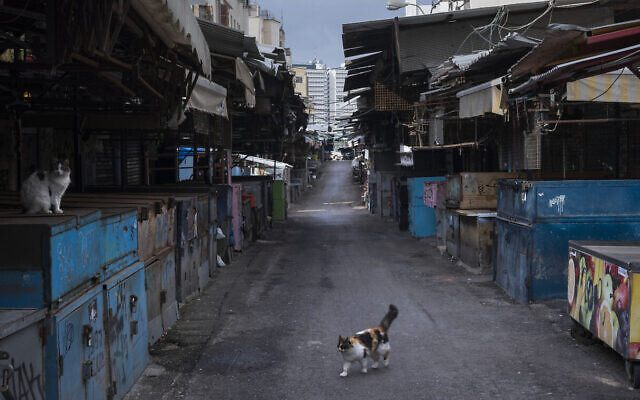 In this March 28, 2020, photo, a cat walks in a closed food market during lockdown following government measures to help stop the spread of the coronavirus in Tel Aviv, Israel. (AP Photo/Oded Balilty)