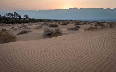 An illustrative photo of sand dunes in the Arava region of southern Israel, near the Red Sea city of Eilat, on August 30, 2019. (Mila Aviv/Flash90)