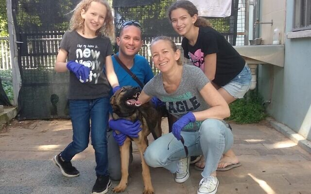 Kion, a puppy from the Tel Aviv Society for the Prevention of Cruelty to Animals, with his new family, the Ravids of Ramat Gan. (Courtesy Tel Aviv SPCA)