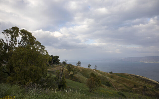 In this April 25, 2020 photo, wildflowers bloom at an empty national park overlooking the Sea of Galilee, locally known as Lake Kinneret (AP Photo/Ariel Schalit)