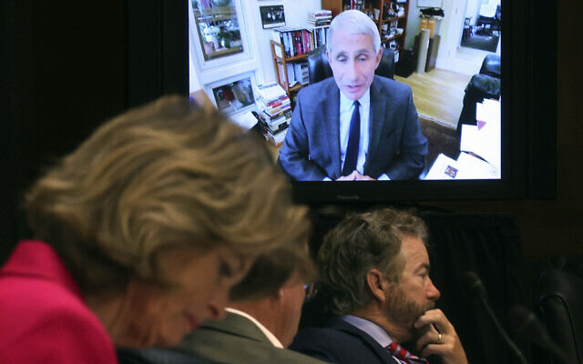 Senators listen as Dr. Anthony Fauci, director of the National Institute of Allergy and Infectious Diseases, speaks remotely during a virtual Senate Committee for Health, Education, Labor, and Pensions hearing, Tuesday, May 12, 2020 on Capitol Hill in Washington. (Win McNamee/Pool via AP)