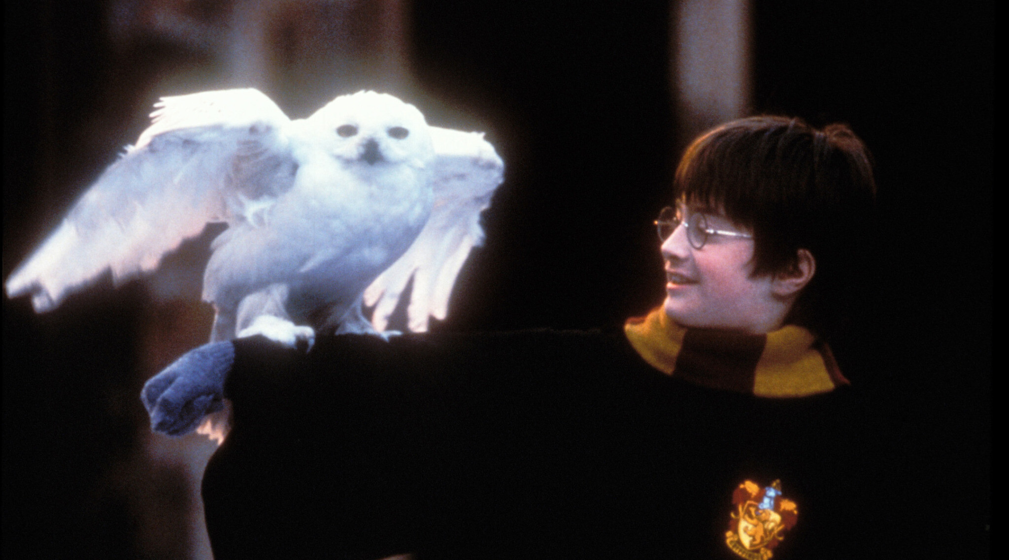 You can watch Daniel Radcliffe read Harry Potter and the Philosopher's Stone