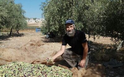 David Kishik-Cohen at his olive grove outside the Kochav Hashahar settlement. (via WhatsApp)