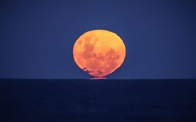 The Strawberry Moon, the full moon of the month of June, rises over the ocean on Narrawallee Beach, near Mollymook on the South Coast of New South Wales on June 6, 2020. (DAVID GRAY / AFP)