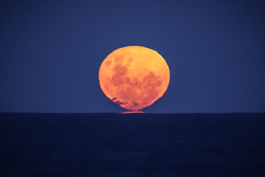 Don't Miss The Strawberry Moon Tonight