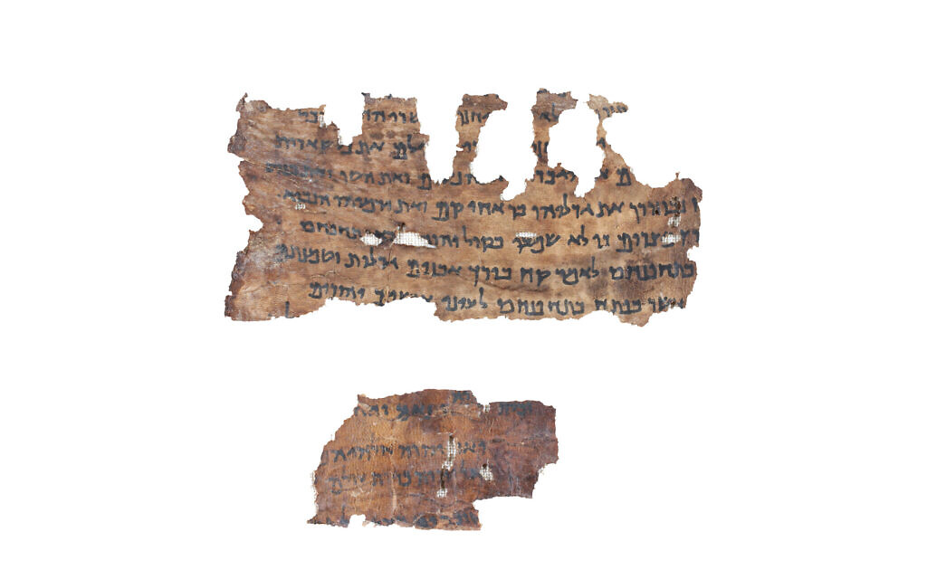 Pioneering Dead Sea Scrolls DNA study reveals Bible was changing 2,000 years ago
