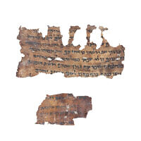 Jeremiah Scroll from the IAA's Dead Sea Scrolls collection. (Shai Halevi, Courtesy of the Israel Antiquities Authority)
