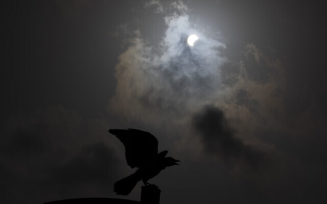 A crow is silhouetted against a partial solar eclipse in Hefer Valley, Israel, June 21, 2020. (AP Photo/Ariel Schalit)