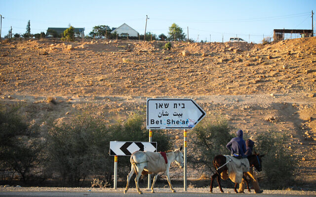 A Palestinian man rides a donkey on a road in the Jordan Valley, in the West Bank on June 14, 2020. (Yonatan Sindel/Flash90)