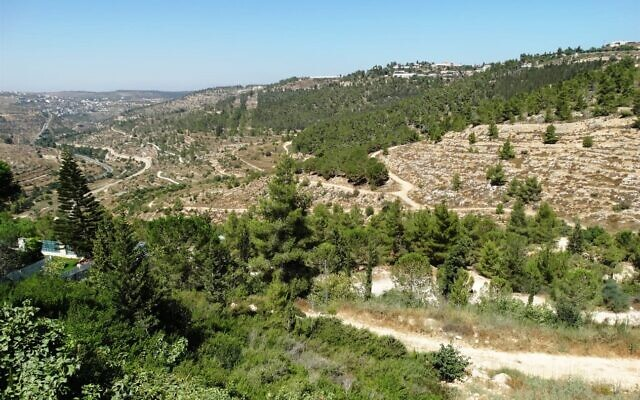 Reches Lavan, or White Ridge, west of Jerusalem. (Dov Greenblat, Society for the Protection of Nature in Israel)