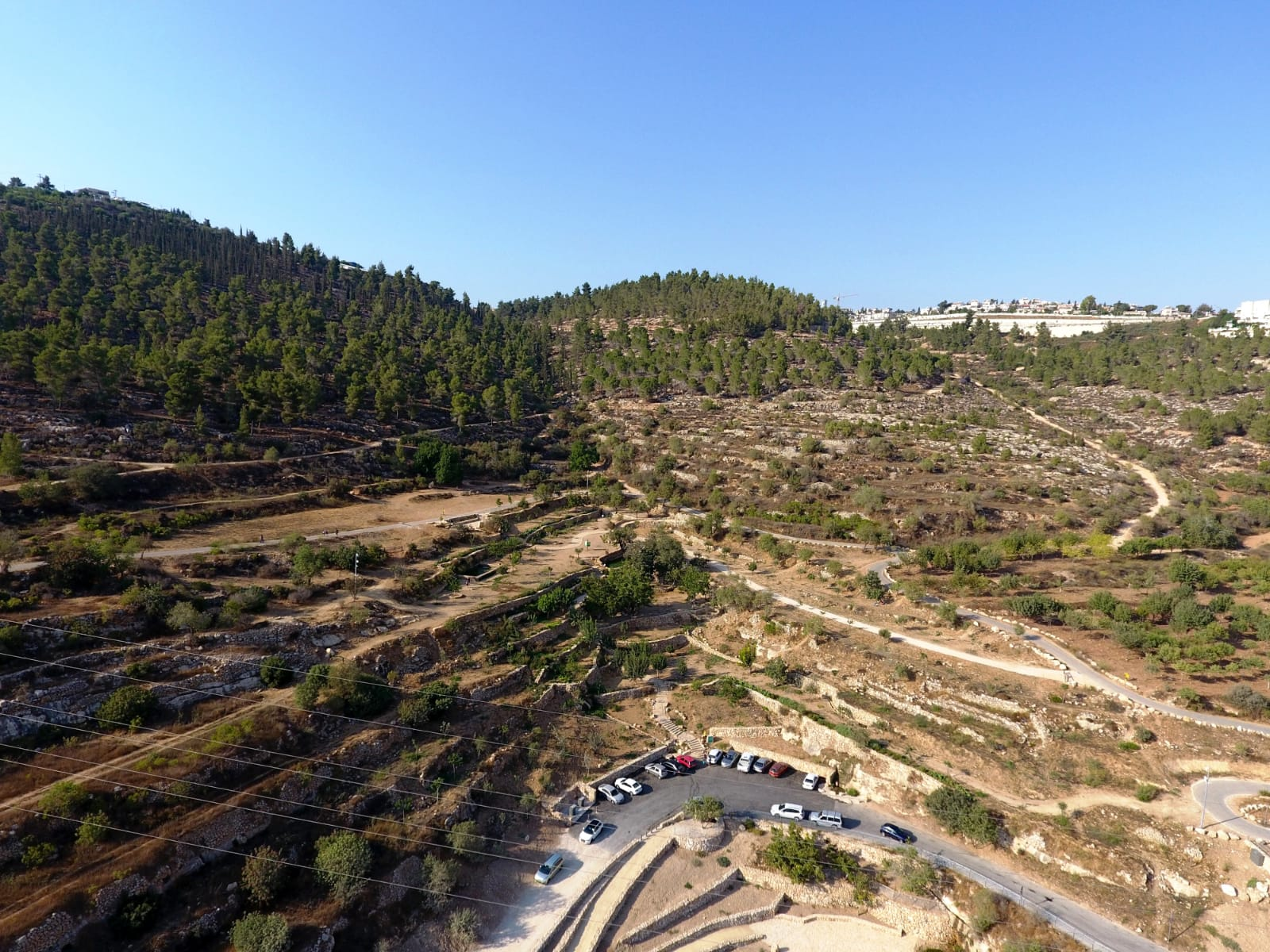 Reches Lavan, or White Ridge, east of Jerusalem. (Dov Greenblat, Society for the Protection of Nature in Israel)