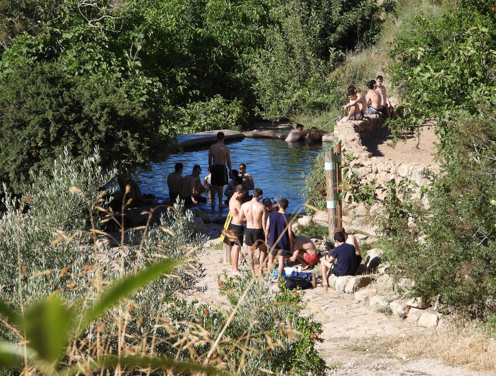 The Lavan spring southeast of Jerusalem. (Dov Greenblat, Society for the Protection of Nature in Israel)