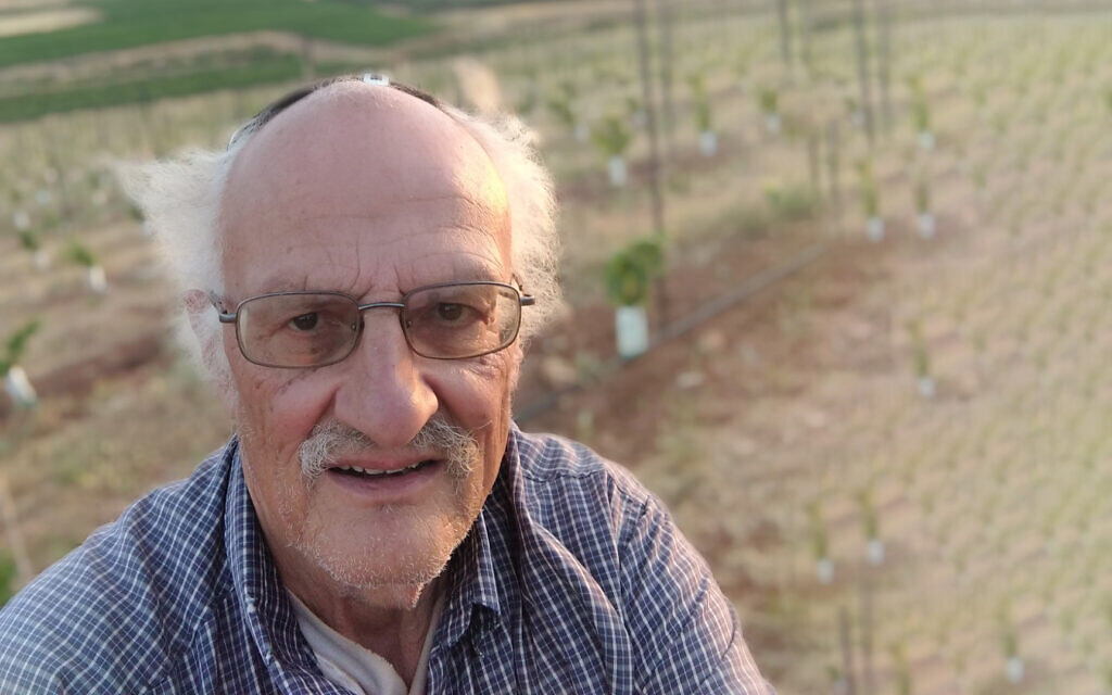 Ira Rappaport at his blueberry field, near Shiloh, on June 4, 2020 (Photo: courtesy)